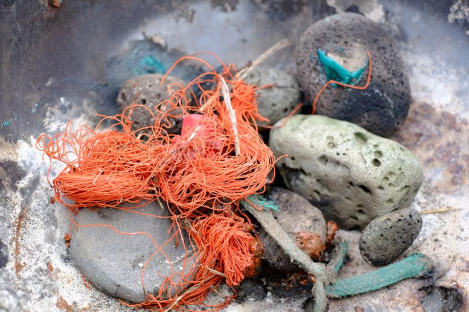 Standard stones in pot