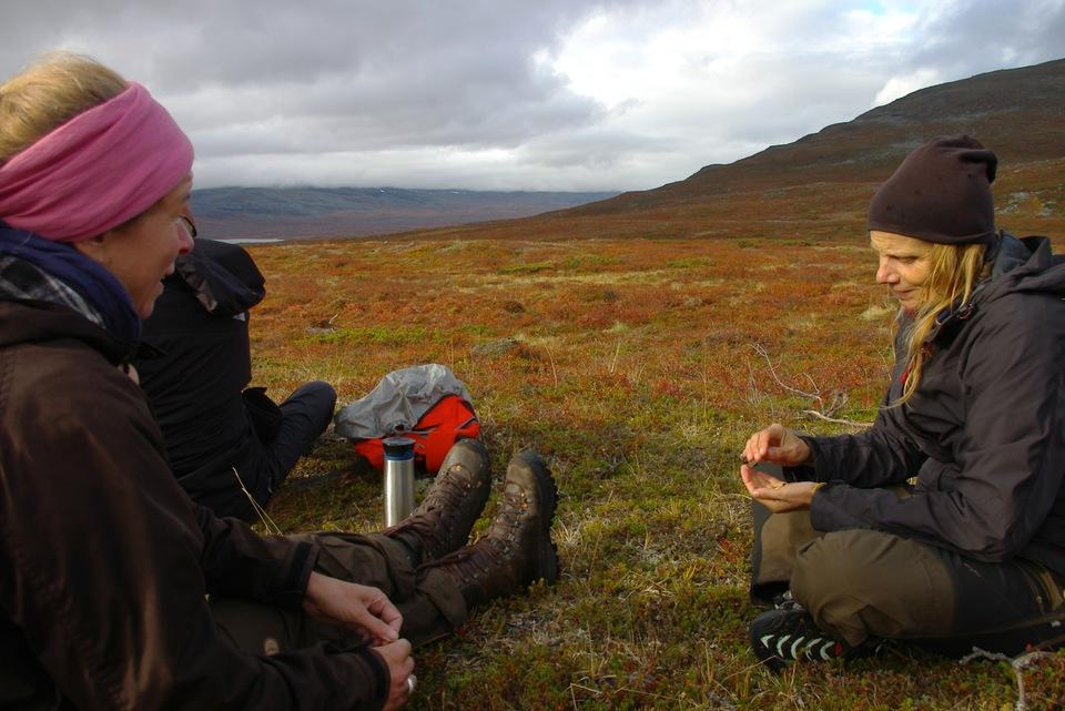 Standard ssotl judith listening to leena netta norro