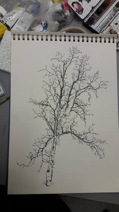 Standard 1 tundra birch