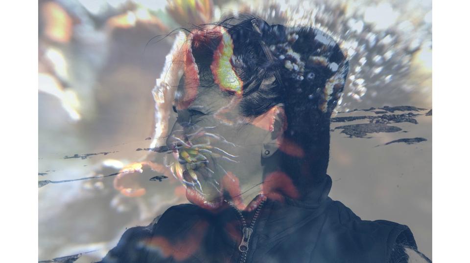 Standard lichen face 22