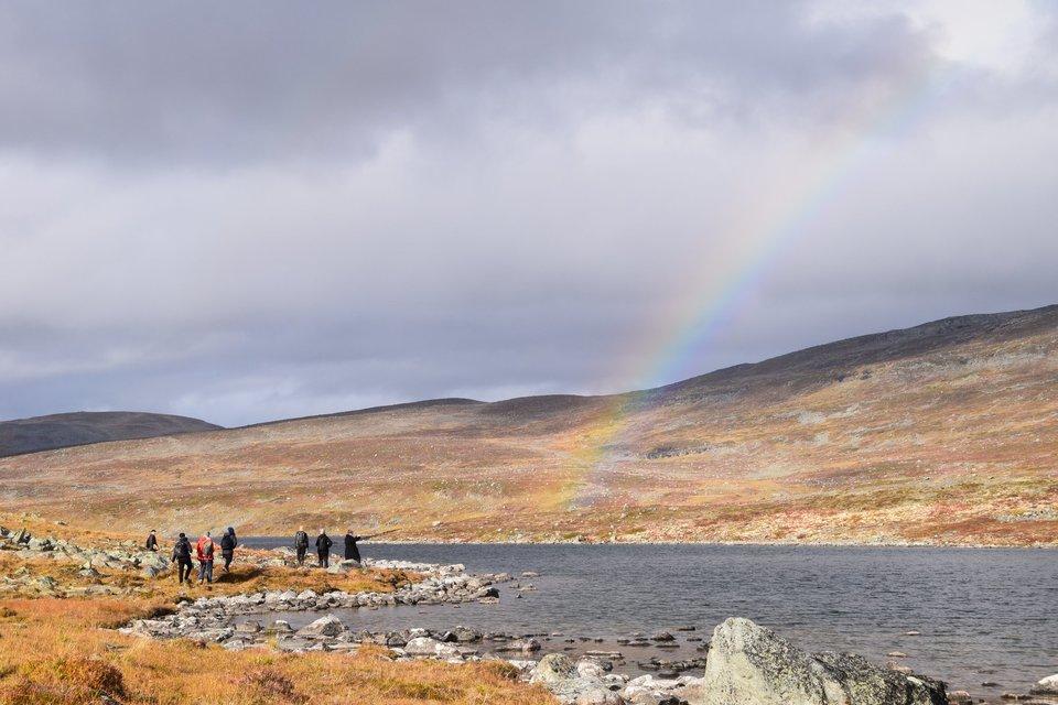 Standard rainbow